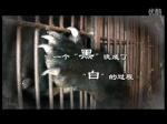 The Moonbear Documentary