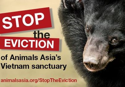 Vietnam bear rescue centre faces closure