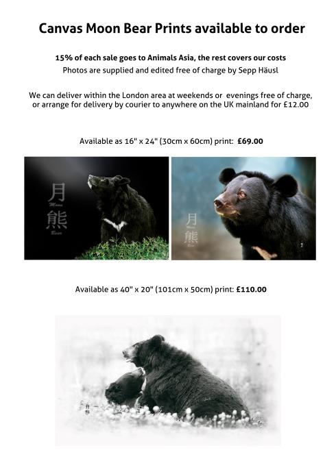 Canvas Moon Bear Prints sign